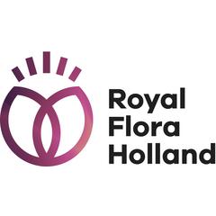 royal flora holland